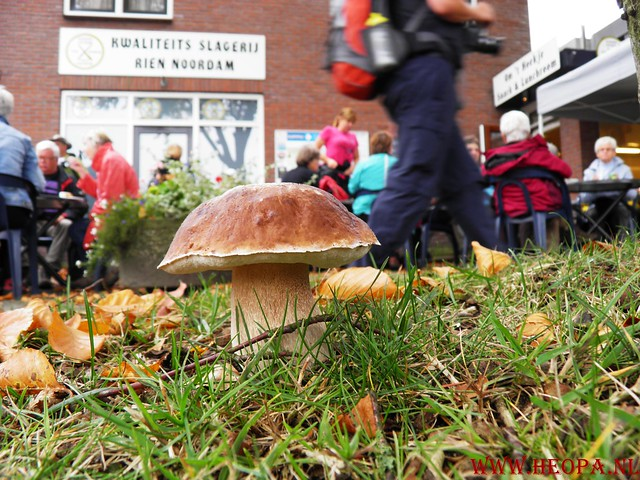 20-10-2012     Wedeblick-   Driebergen        25 Km (103)