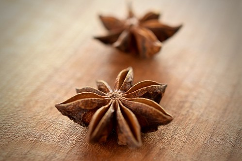 star anise | by Husbands That Cook