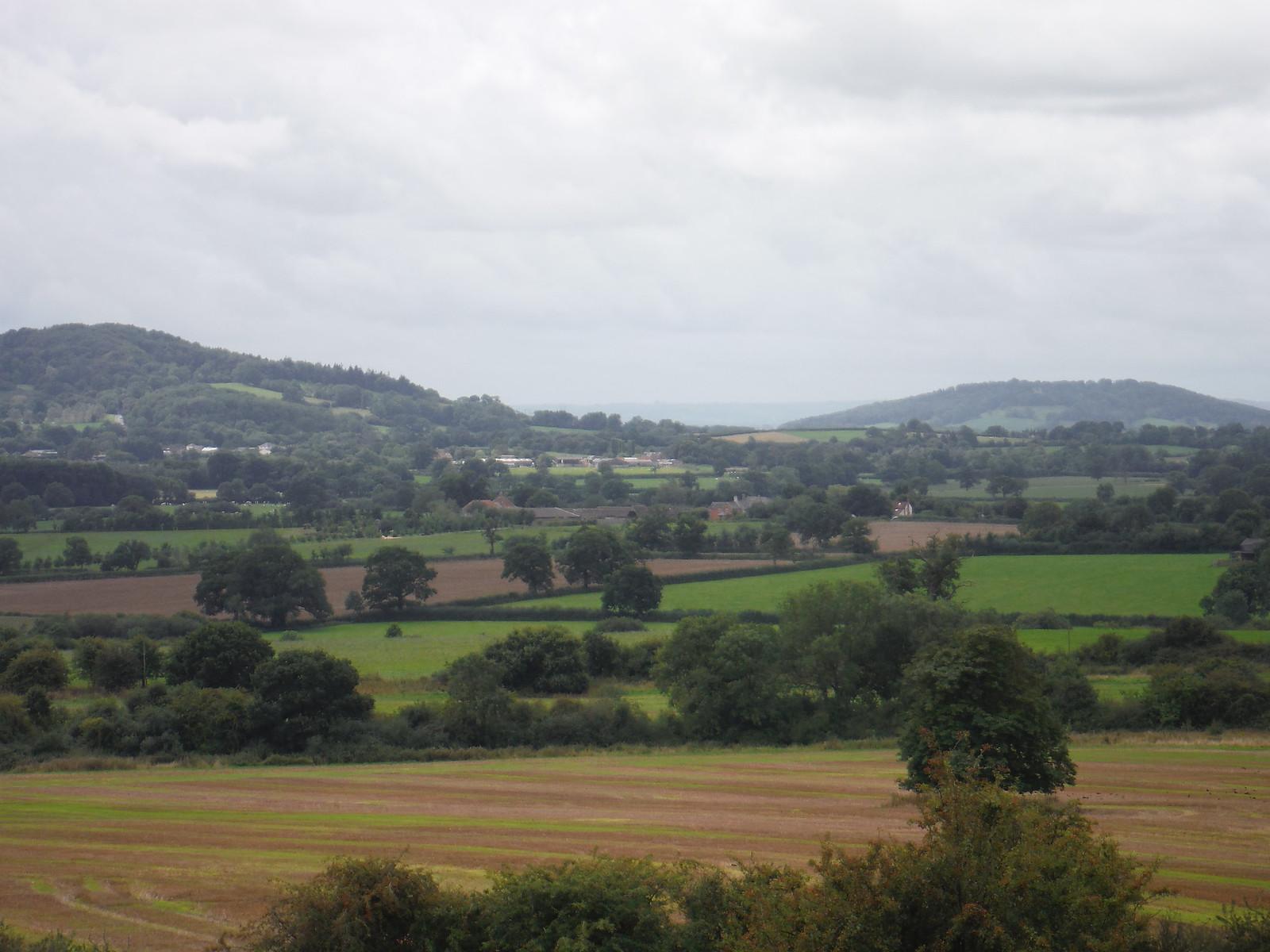 Duncliffe Hill, Dorset SWC Walk 248 Tisbury Circular via Hindon
