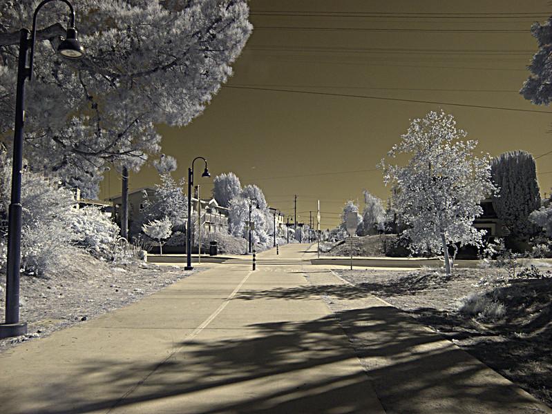 H20151010-0015—Santa Fe Right-of-Way—Berkeley