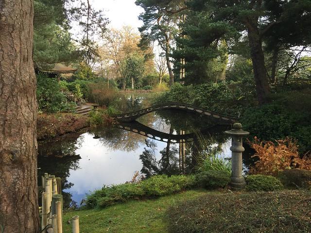 Japanese garden, Tatton Park. EXPLORED.