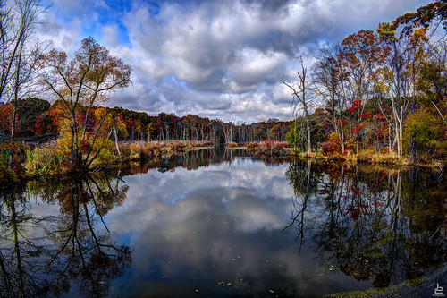 autumn trees sky lake color reflection fall water clouds pond foliage d750 hdr fallintoyourarms