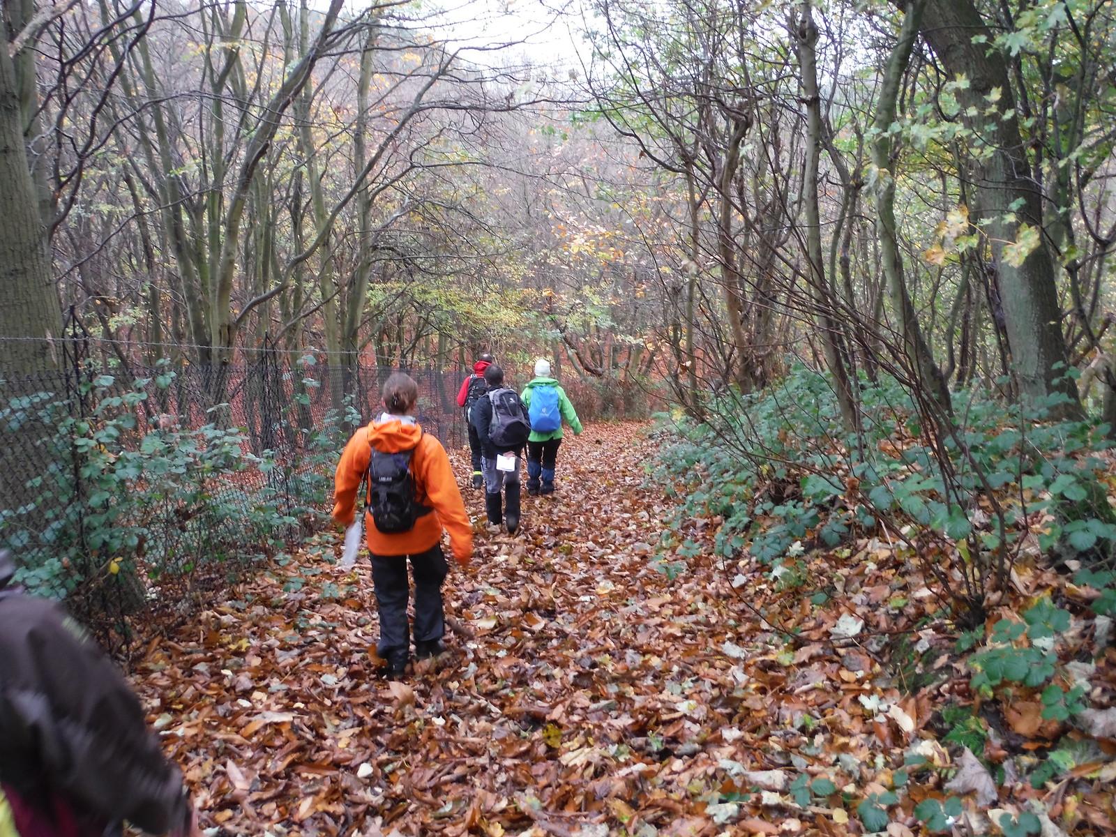 Undulating Route up to the Greensand Ridge SWC Walk 232 Lidlington to Flitwick