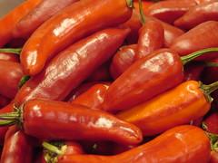 Heirloom Fish peppers