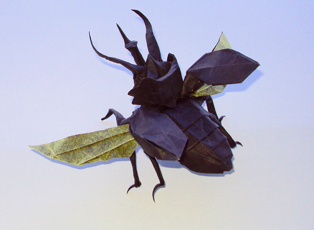 Flying Atlas Beetle by Nguyen Hung Cuong, folded by me