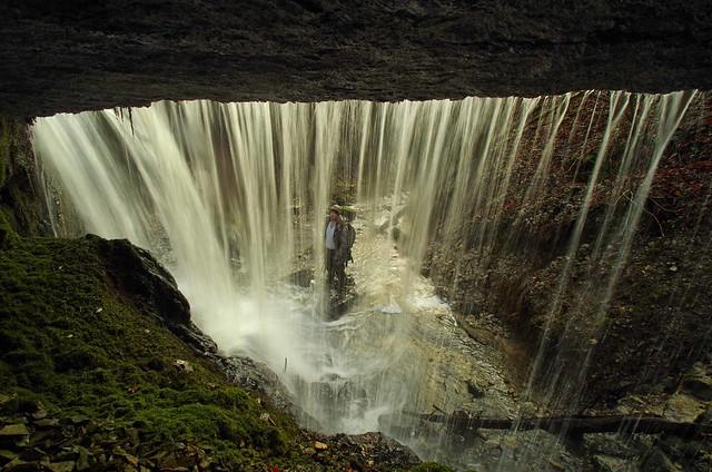 Derrière une des cascades du ru de Charbonnères les sapins