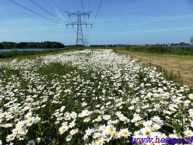 2016-06-09          Almeerdaagse         3e dag 25 Km   (31)