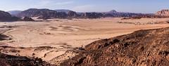 Sinai Plain 2.jpg