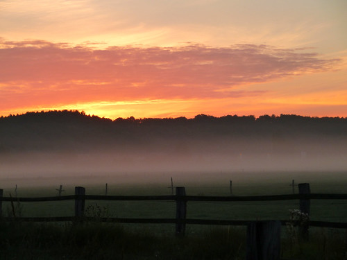mist fog night sunrise day nebel cloudy morningmist sabine1955