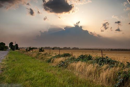sunset cloud storm oklahoma spring wheat el cumulus thunderstorm reno ok duststorm wheatbelt wheatfield elreno dryline beweather weatherthunderstormstormcloudcumulusdrylineduststormdustoklahomael renookelrenooklahomaspringwheatwheat fieldsunsetwheat