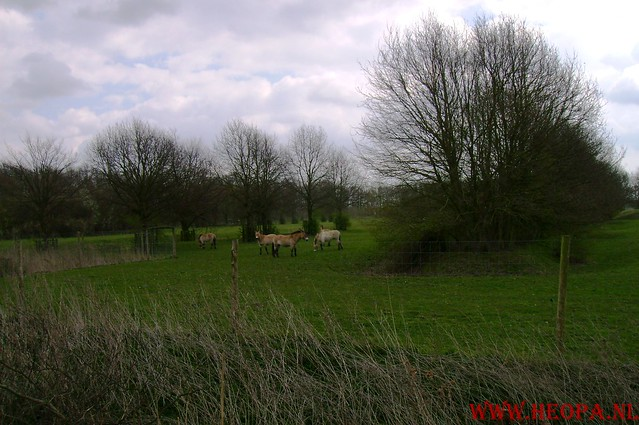 Natuurlijk Flevoland  12-04-2008  40Km (55)