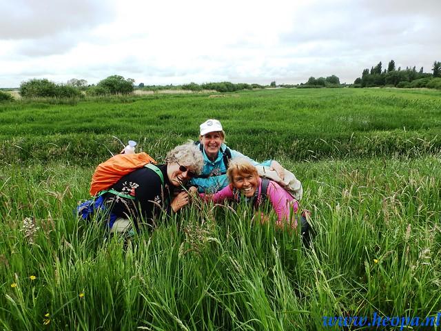 2016-05-25        s'Graveland       25 Km (97)