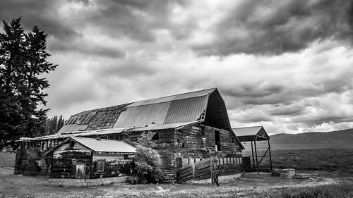 blackandwhite storm clouds barn landscape nikon okanagan farm dslr stormclouds d7100 armstrongbc 18105mmf3556gvr nikon18105mmvr nikond7100