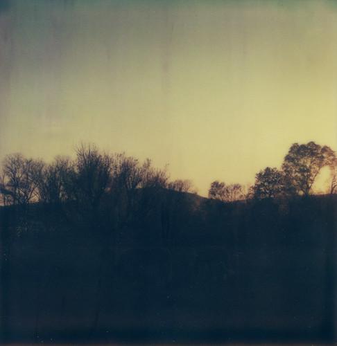 trees sunset horses film field polaroid sx70 dusk tennessee hills instant magichour dayton tzartistic