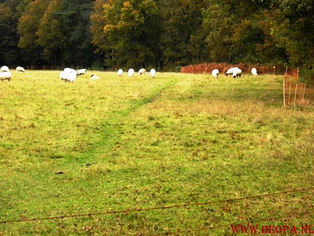 20-10-2012     Wedeblick-   Driebergen        25 Km (167)