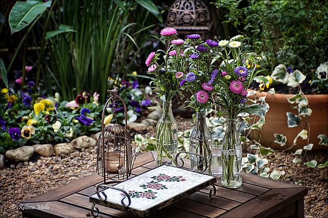 Still life in a rural garden