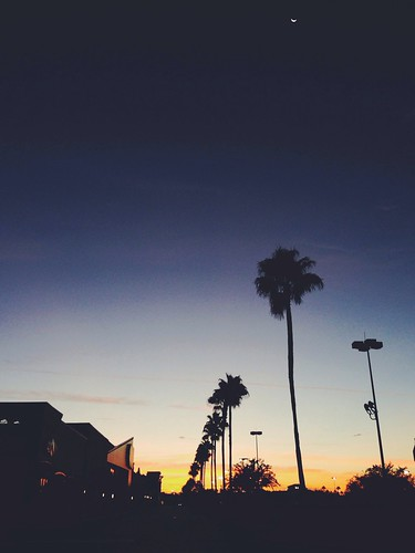 cameraphone morning sky silhouette sunrise orlando florida suburbia fav10 iphoneography originalfilter vscocam
