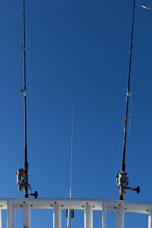 www.hacienda-la-colora.com Canes à pêche dans le ciel