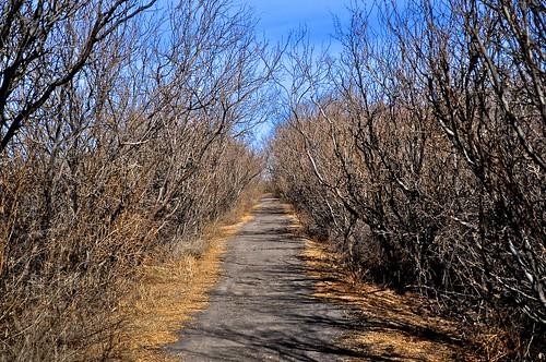 winter nature parks westtexas