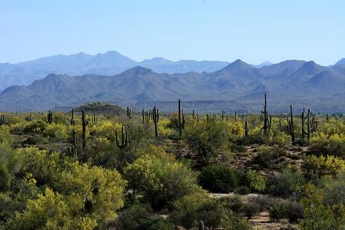 park arizona mountain hill trail regional mcdowell lousley