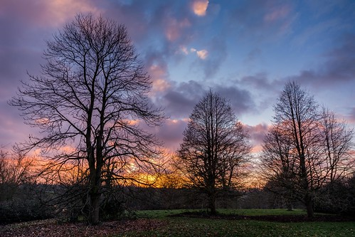 winter sunset england tree silhouette clouds kent nikon solitude peace tranquility maidstone lightroom motepark sigma1020f456 d7100