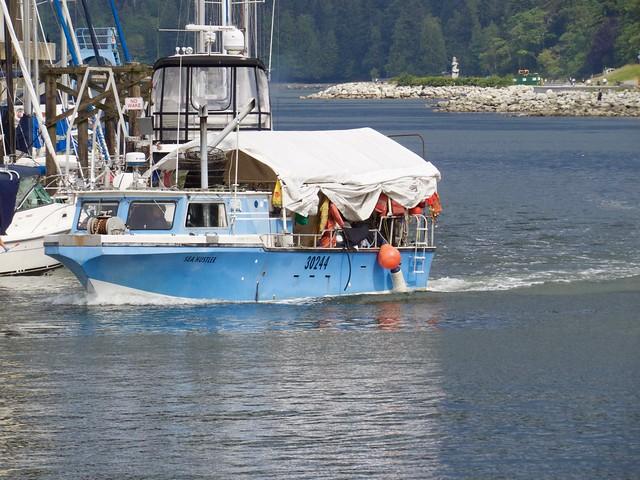 Sea Hustler 002