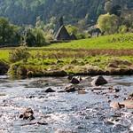 Irlanda, Condado de Wicklow, Glendalough 15