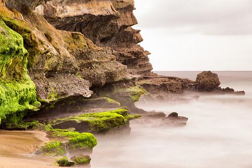 california green beach canon unitedstates erosion lagunabeach 6d