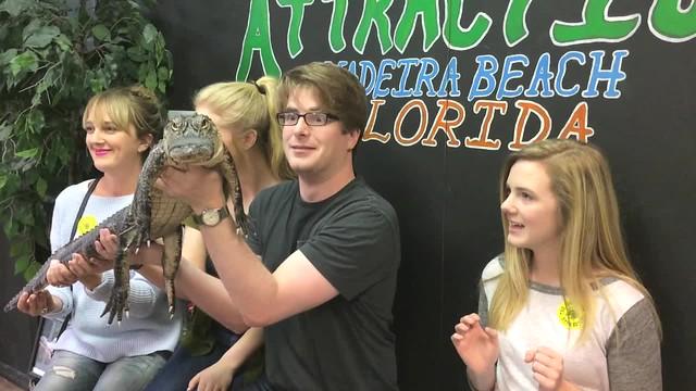 Grabbing a Gator