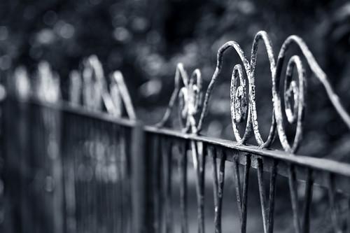 Fence | by Jana93