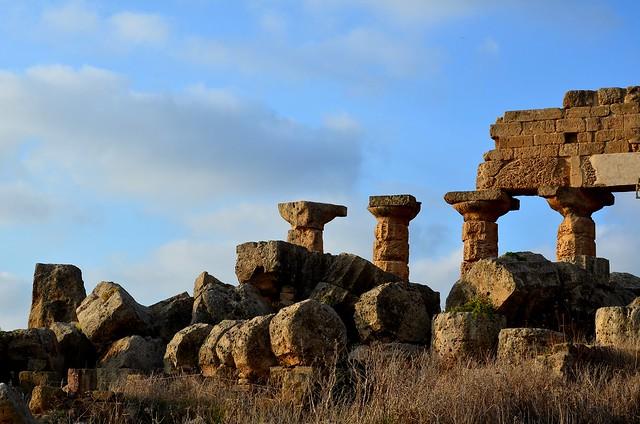 Parc Archéologique de Selinunte  (3)