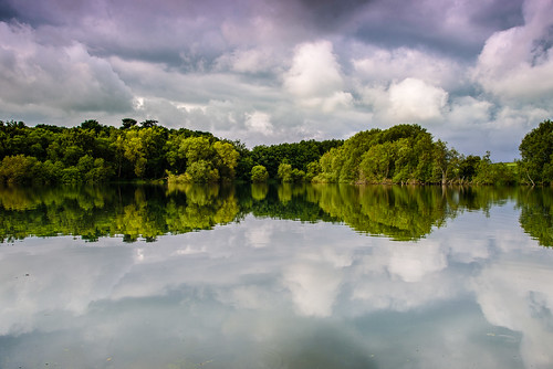 uk trees england lake reflection nature water clouds landscape suffolk nikon horizon reservoir d750 f4 eastanglia altonwater landscapephotography 24120mm simontalbothurnphotography