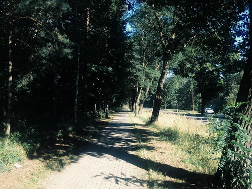 the worst part of the first day walking. too much sun and i was really tired. | by ftrc