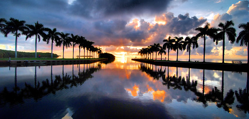 ocean sky seascape reflection nature water clouds sunrise palms landscape estate florida miami scenic deering deeringestate deeringestates cutlerbay