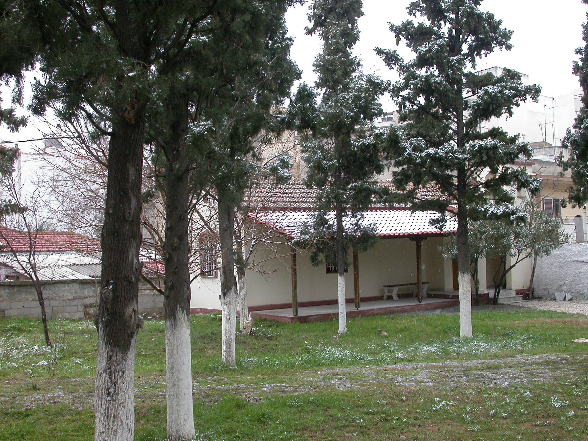DSCN1433