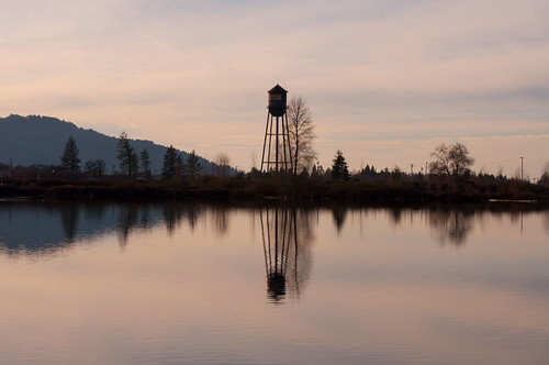 lebanon oregon landscape geese watertower ducks waterfowl mallards widgeon waterscape martinjones nikond5000 cheadlelake petersonsbutte cheadlelakepark
