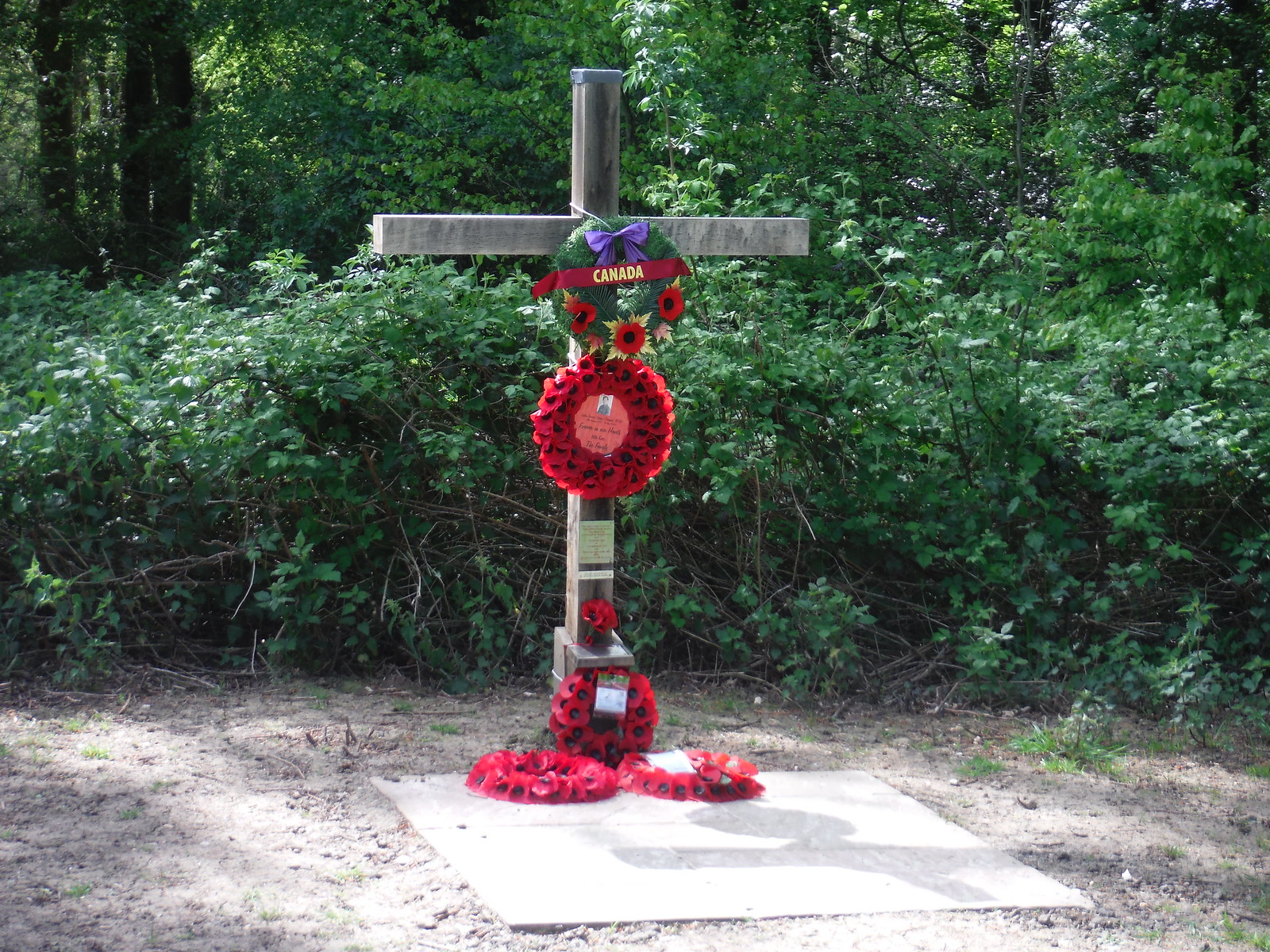 WWII Memorial, on Beech Avenue, Stansted Park SWC Walk Rowlands Castle Circular