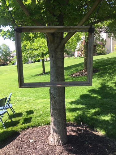 Picture frame in a tree. Allie's Graduation! | by LauraGilchristEdu