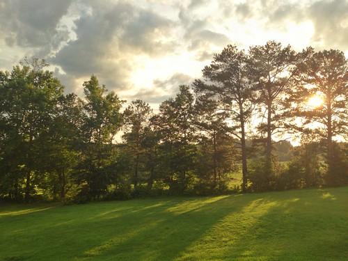 summer yard uploaded:by=flickrmobile flickriosapp:filter=nofilter