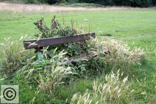 IMG_5116 Crimdon Bench C