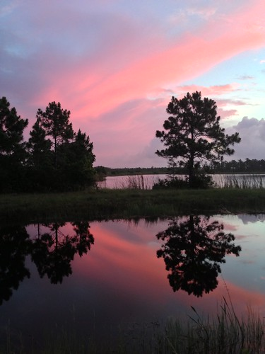 pink cloud water dawn florida reflect martincounty joneshungryland