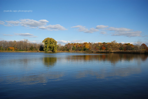 park autumn trees sky lake color reflection nature water leaves clouds landscape wideangle change thegalaxy 1020mmsigma