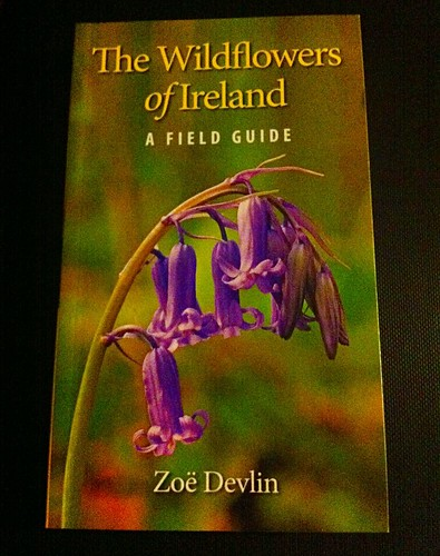 nature book iphone4 zoedevlin uploaded:by=flickrmobile flickriosapp:filter=nofilter ilobsterit 2015onephotoeachday thewildflowersofireland