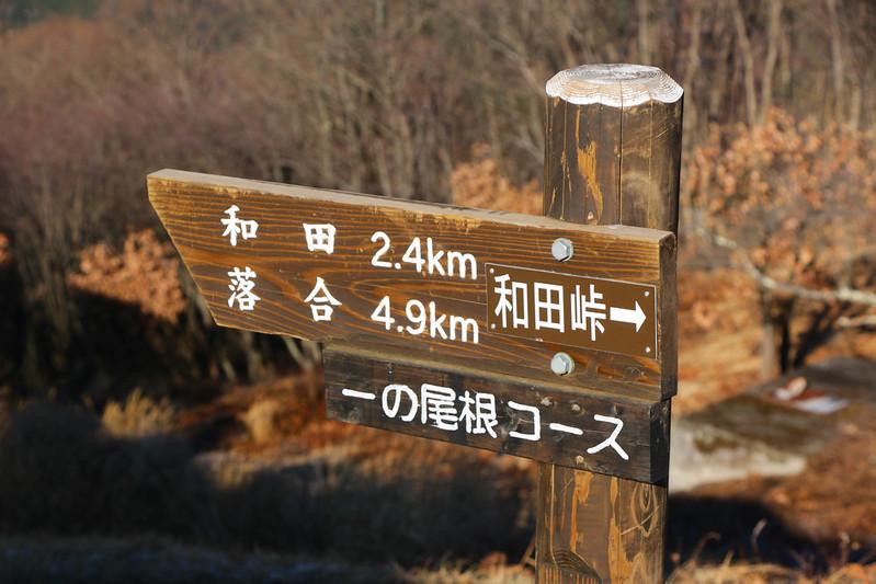 陣馬山 一の尾根コース
