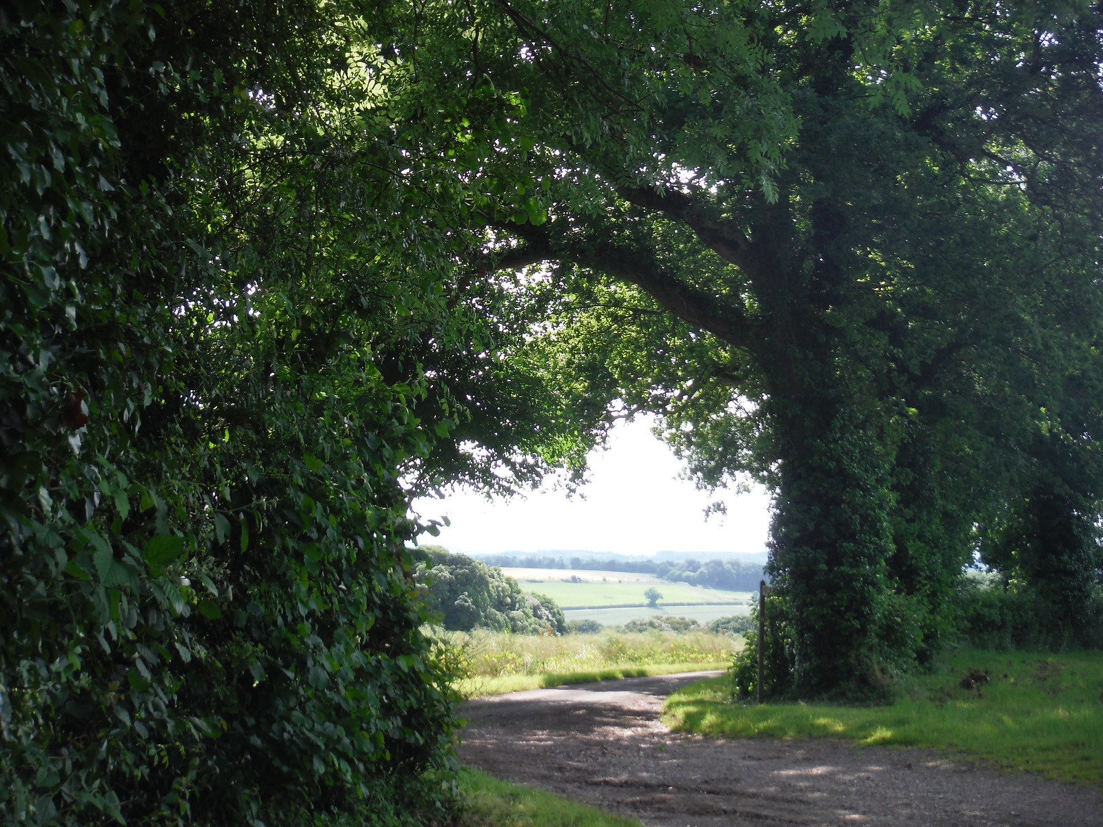 View into Test Valley SWC Walk 265 - Dean to Mottisfont and Dunbridge