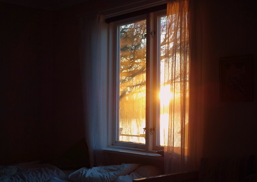 light shadow sun sunlight tree window bed bedroom indoor shade curtains
