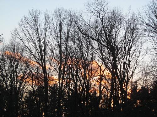 sunset evening bluesky putnamcounty orangeclouds carmelny treesillhouettes winter2015