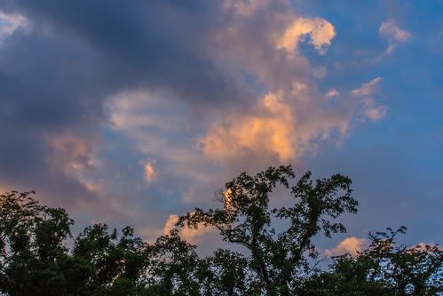 trees sunset clouds northcarolina smokies smokeymountains