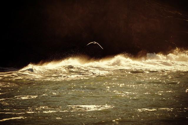 Il mare è uno solo ovunque io sia ...