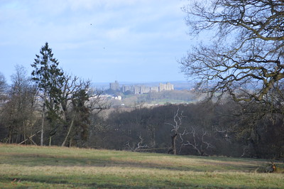 Windsor Castle see from The Great Park